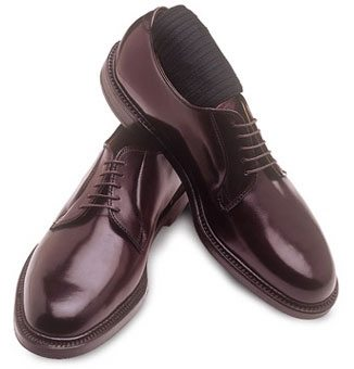 Dress Shoes with Laces