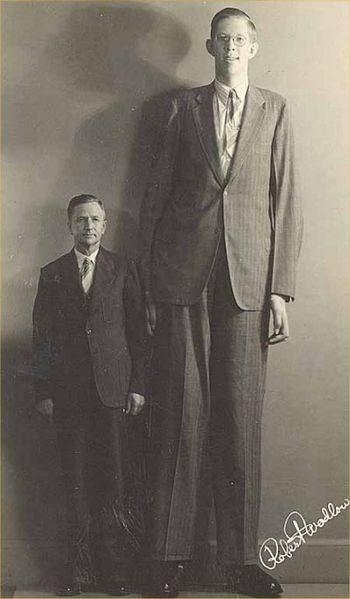 tall man style