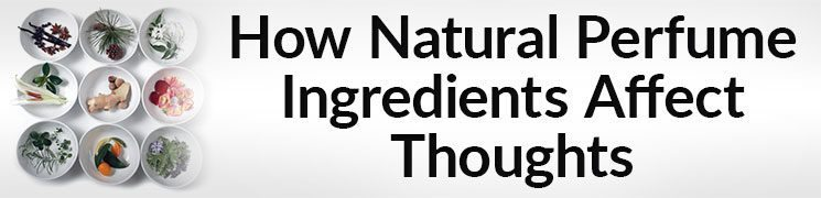All Natural Scents Smell Better | How Natural Perfume Ingredients Affect Thoughts