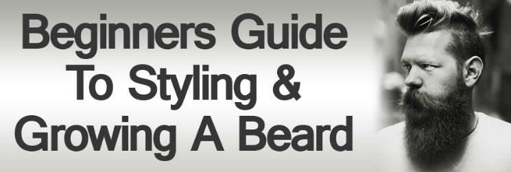 Wondrous Beginners Guide To Styling Amp Growing A Beard How To Grow A Beard Short Hairstyles Gunalazisus