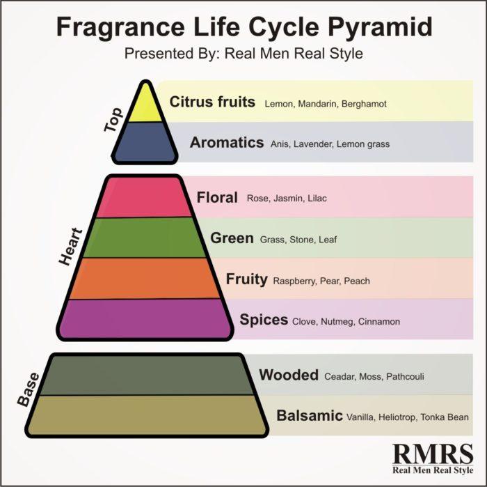 fragrance anatomy