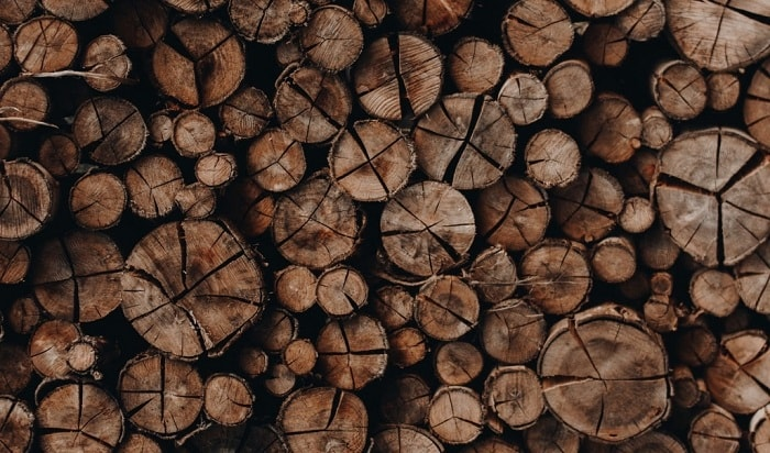 woody fragrances