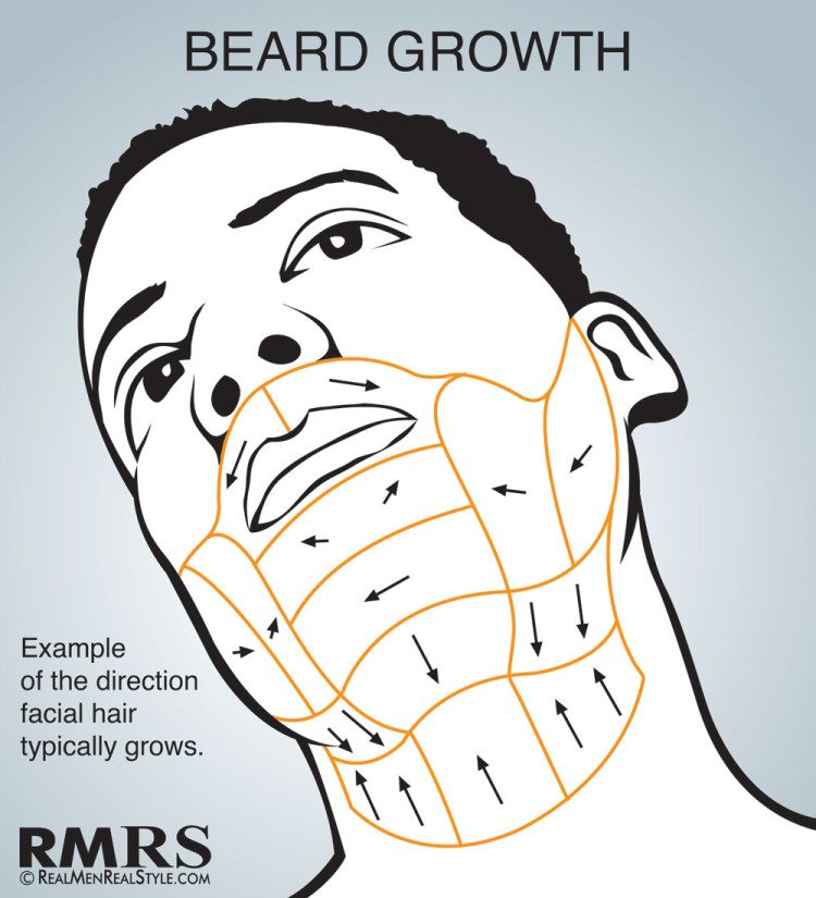 Shave Maps Infographic | How To Shave Correctly | Which ...