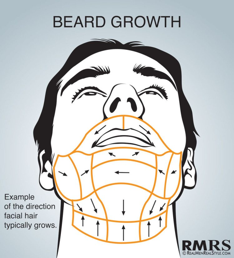 Shave Maps Infographic | How To Shave Correctly | Which Direction Do on