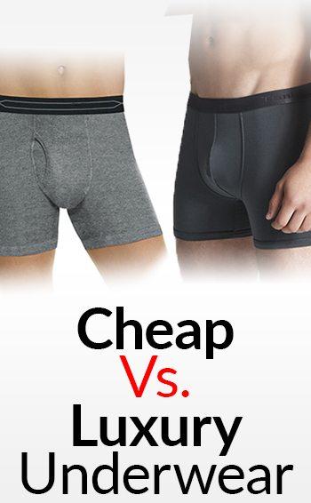 cheap vs luxury men u0026 39 s underwear
