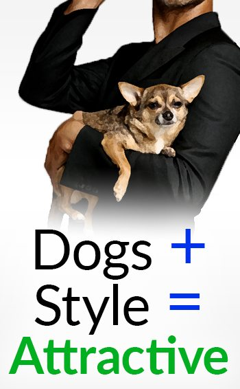 why are men dogs