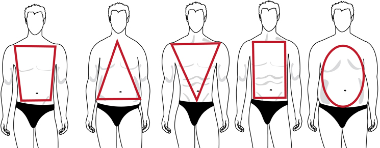 men body shapes