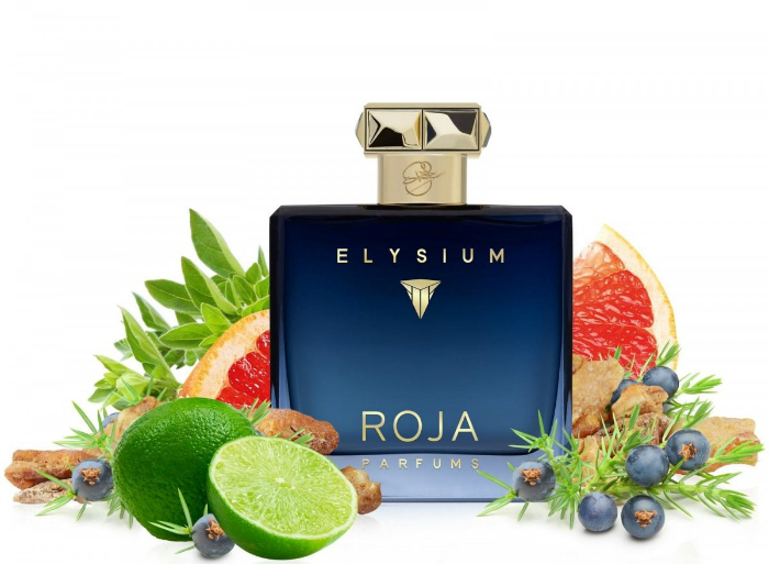best selling mens colognes roja elysium