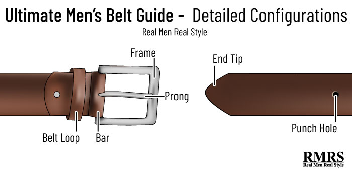 belt anatomy infographic 3