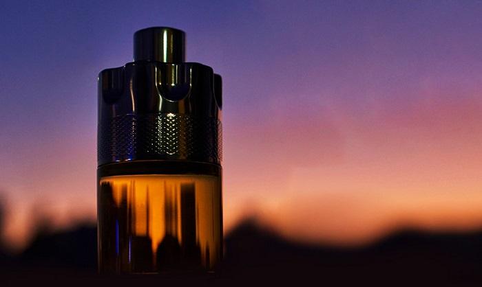 azzaro wanted perfume