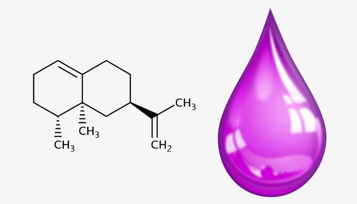 toxic ingredients in skincare fragrance