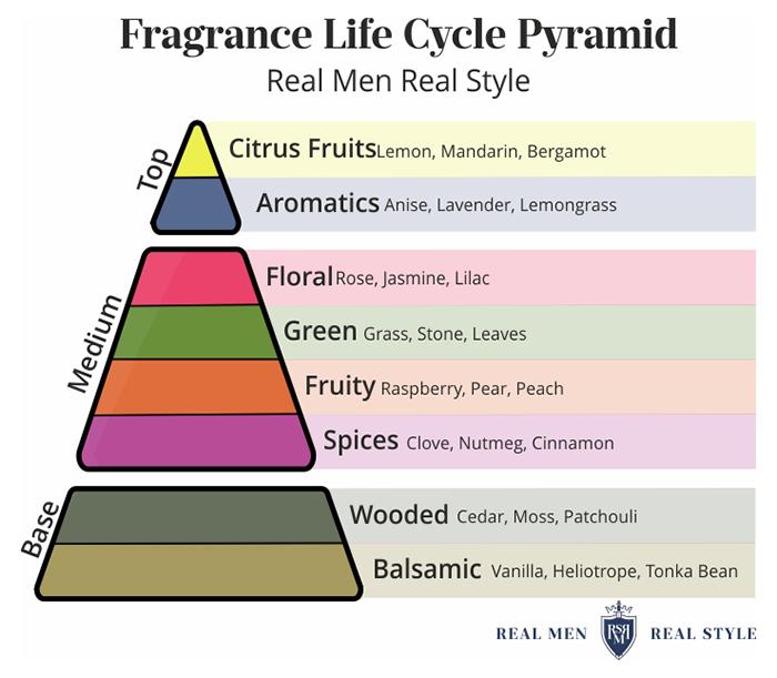 notas de fragrância explicadas