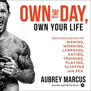 audible audio books own day life