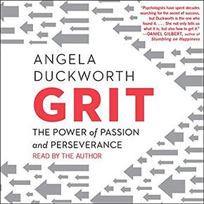 audible audio books grit